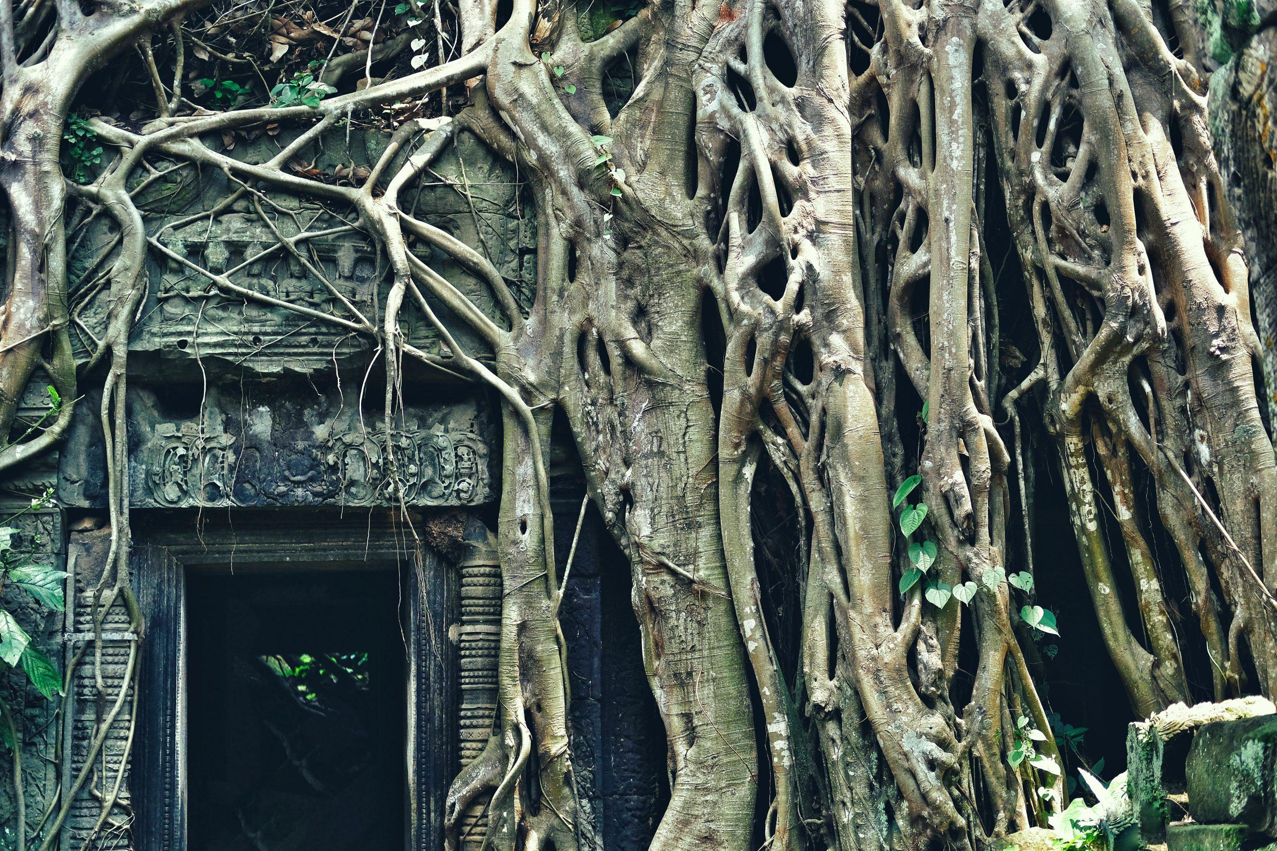 ASIE KAMBODŽA (Angkor Vat)
